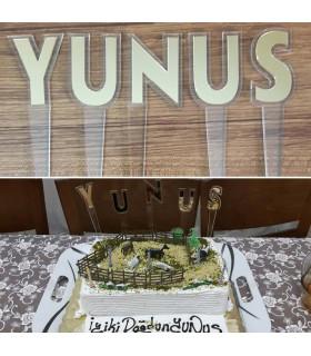 Doğum Günü Pastası İçin Aynalı İsimlik